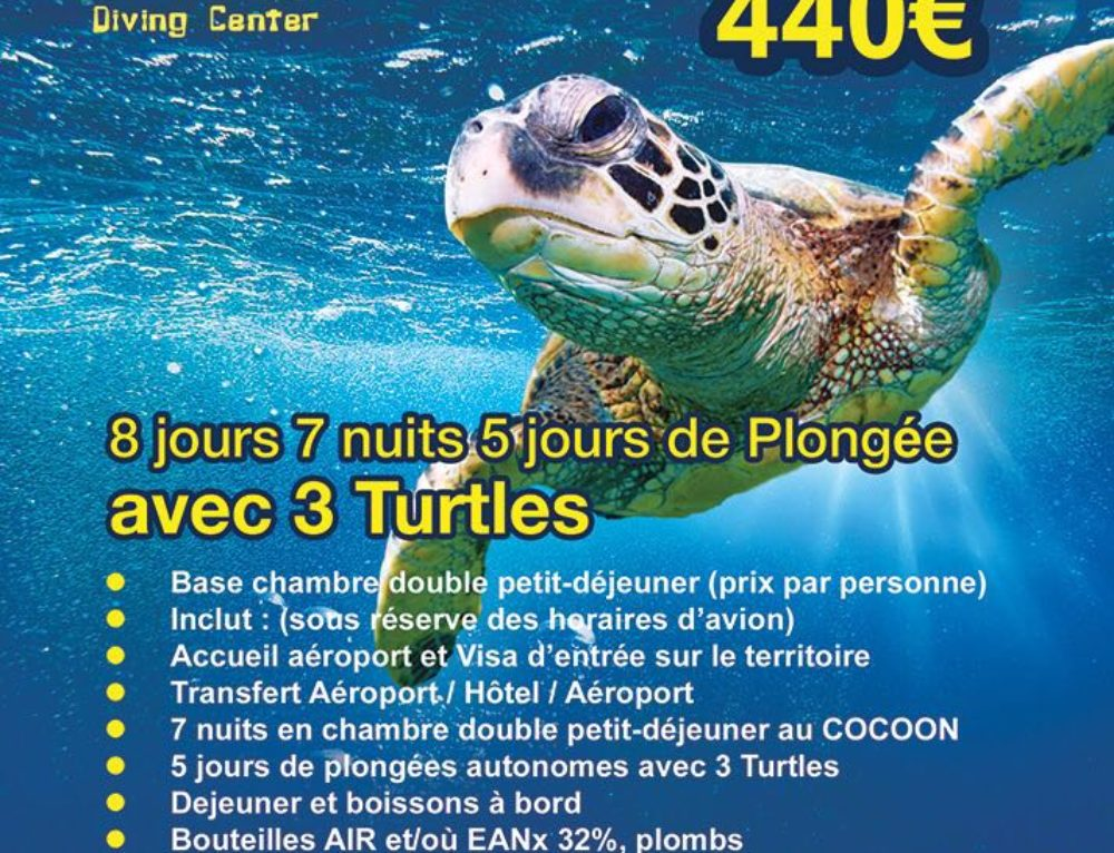 Package 2018 – 3 Turtles Diving Center