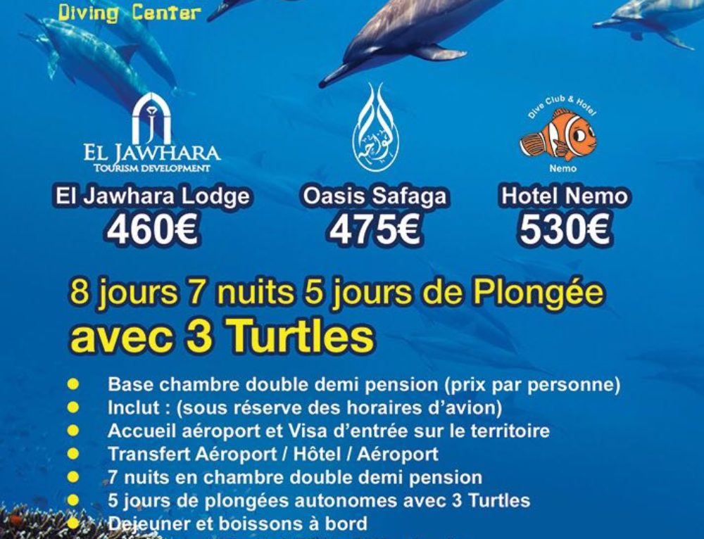 Hotel Package 2018 3 Turtles Diving Center